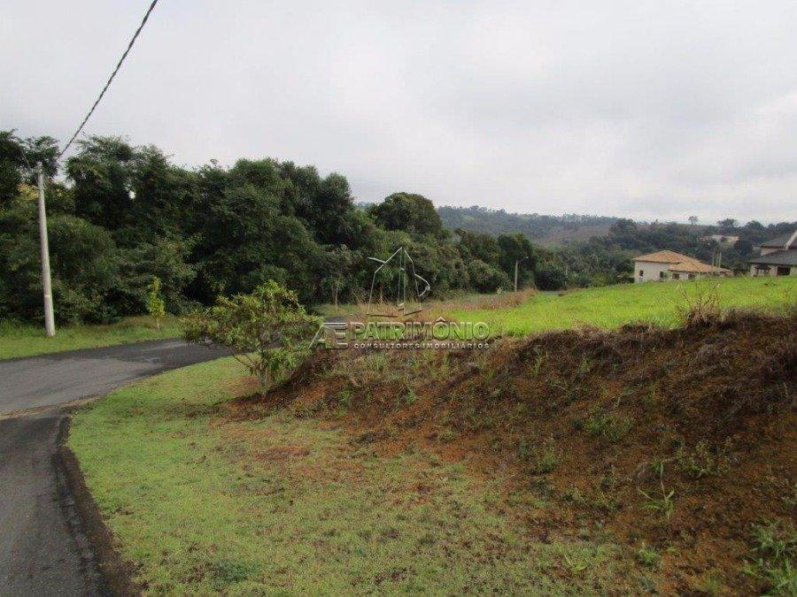 Terreno (5)