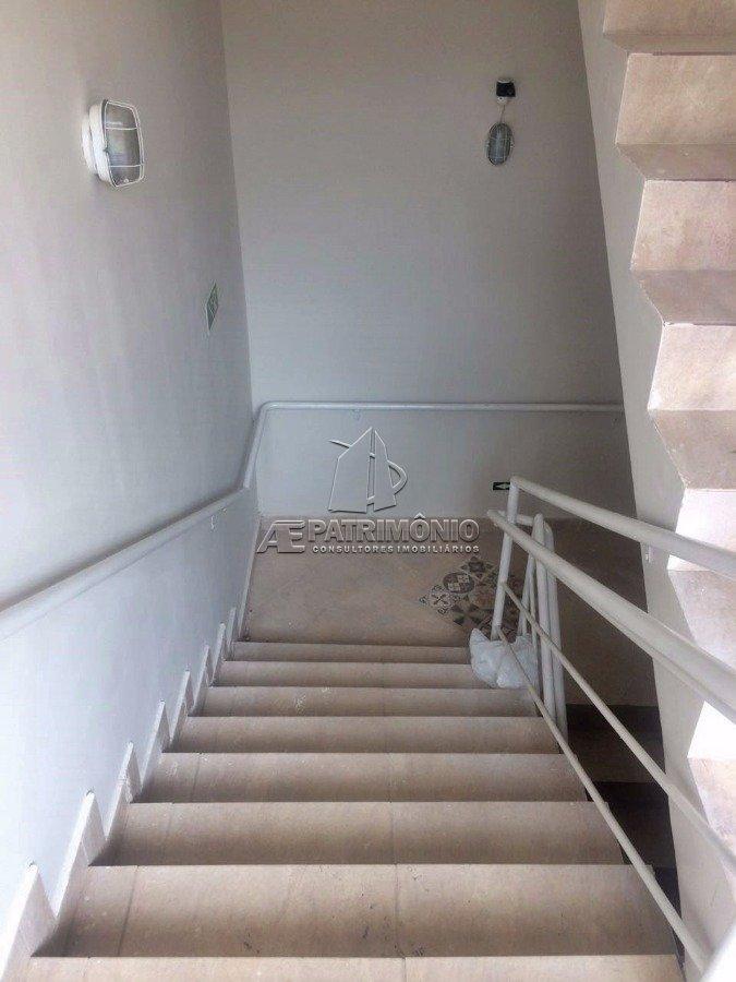 6 Escada