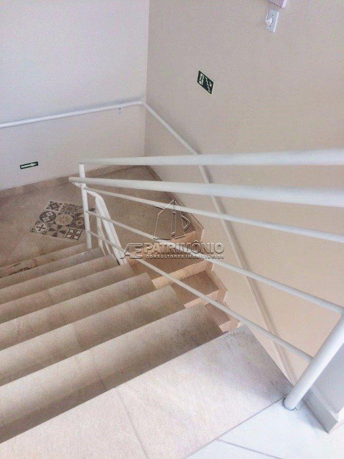 8 Escada