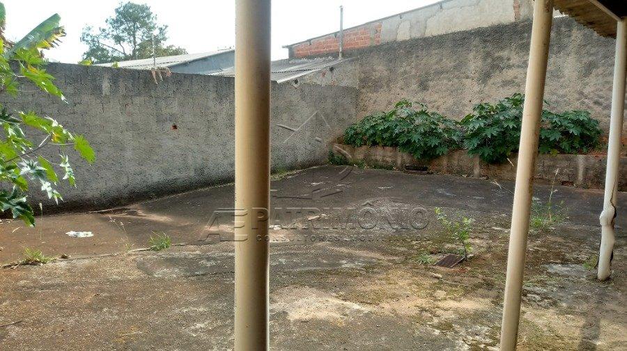 5 quintal (1)