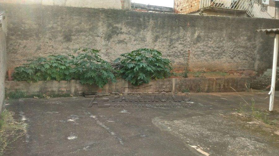 5 quintal (2)