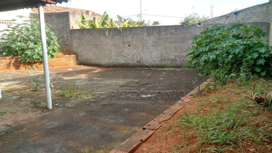 5 quintal (3)